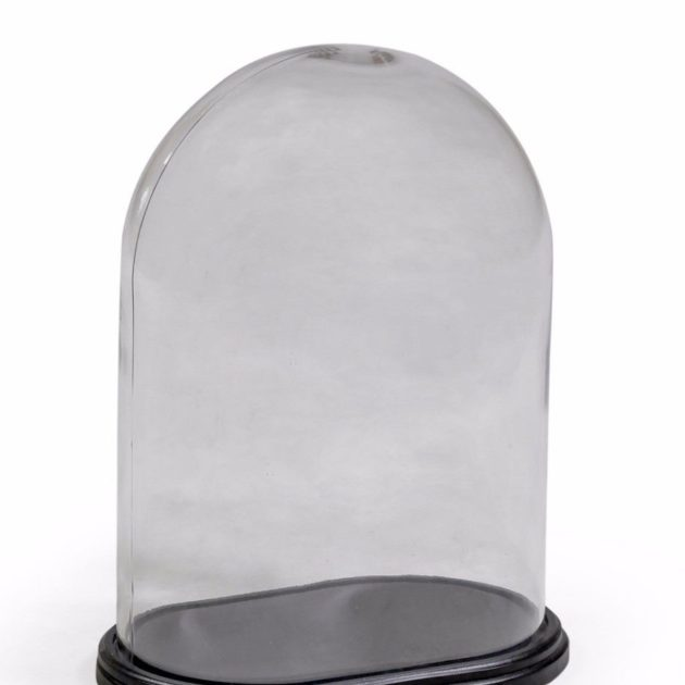 OVAL GLASS DOME WITH BASE. MAR403523