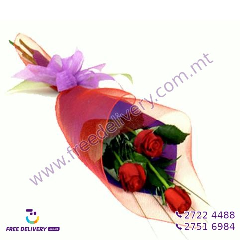 BOUQUET OF 3 FRESH RED ROSES IN SLEEVE
