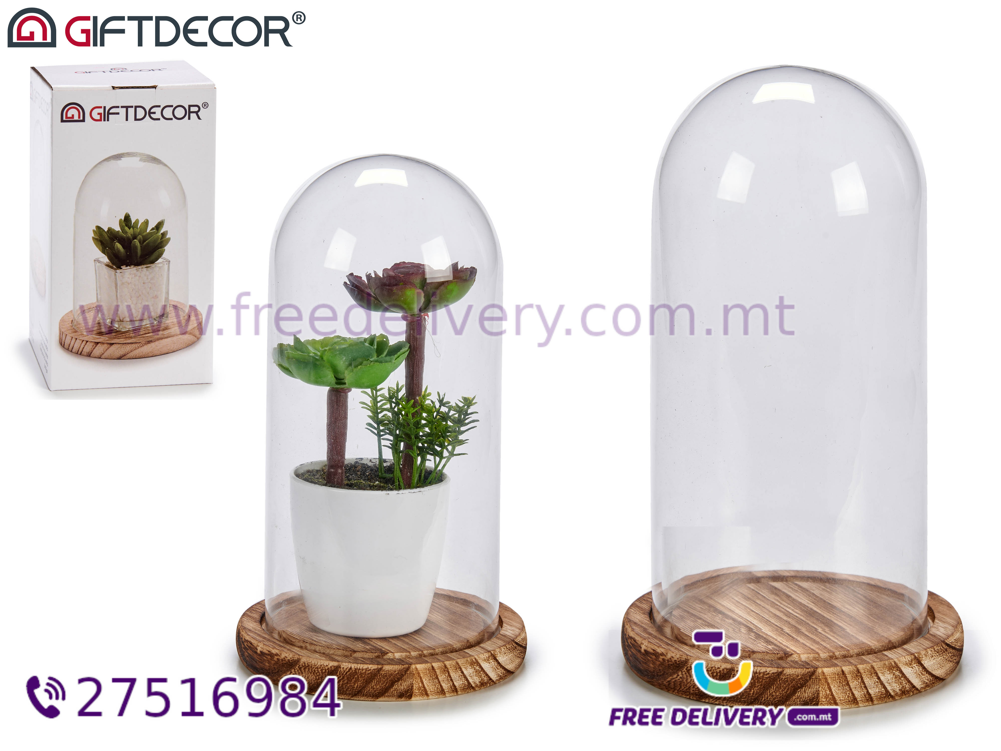 MEDIUM GLASS DOME 1220 WITH NARROW WOODEN BASE AR565112