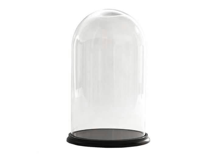 OVAL GLASS DOME. MAR201025