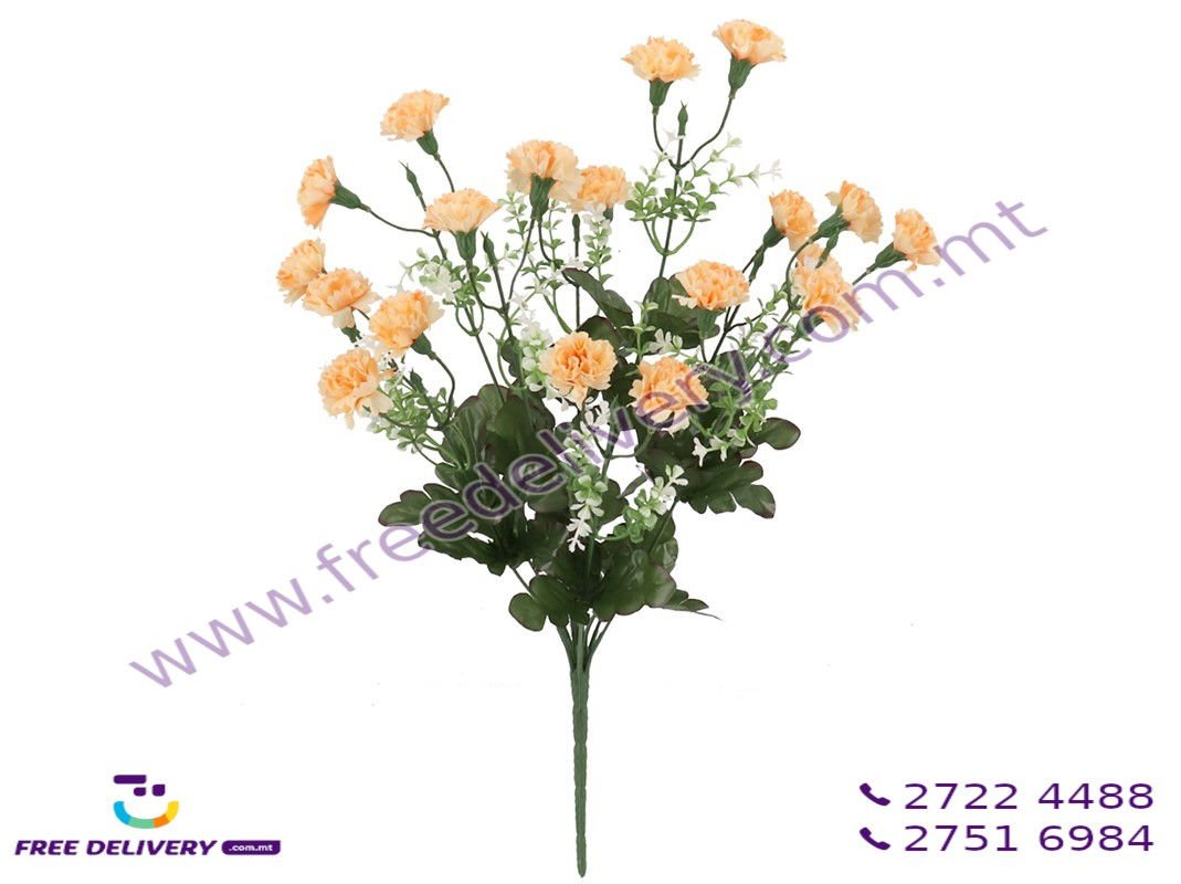 CARNATION BUNCH WITH 10 FLOWERS. GE744898