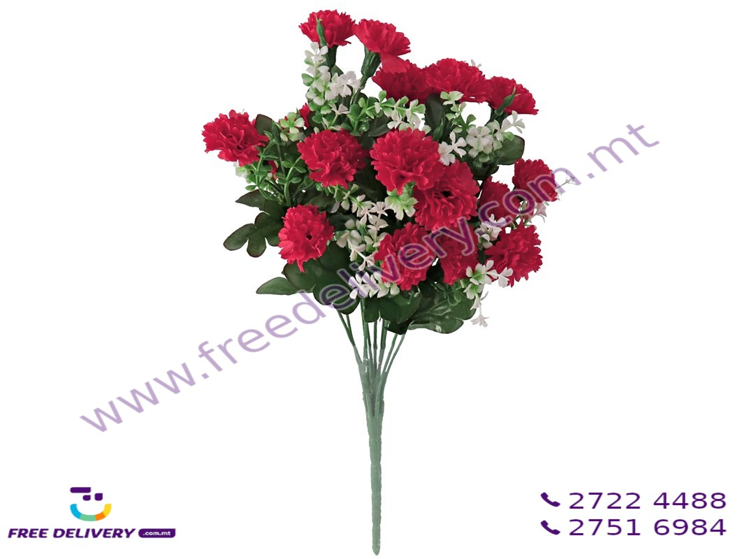 CARNATION BUNCH WITH 10 FLOWERS. GE744904